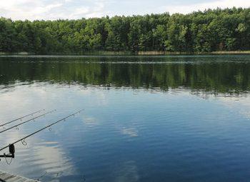 chojnica-łowisko