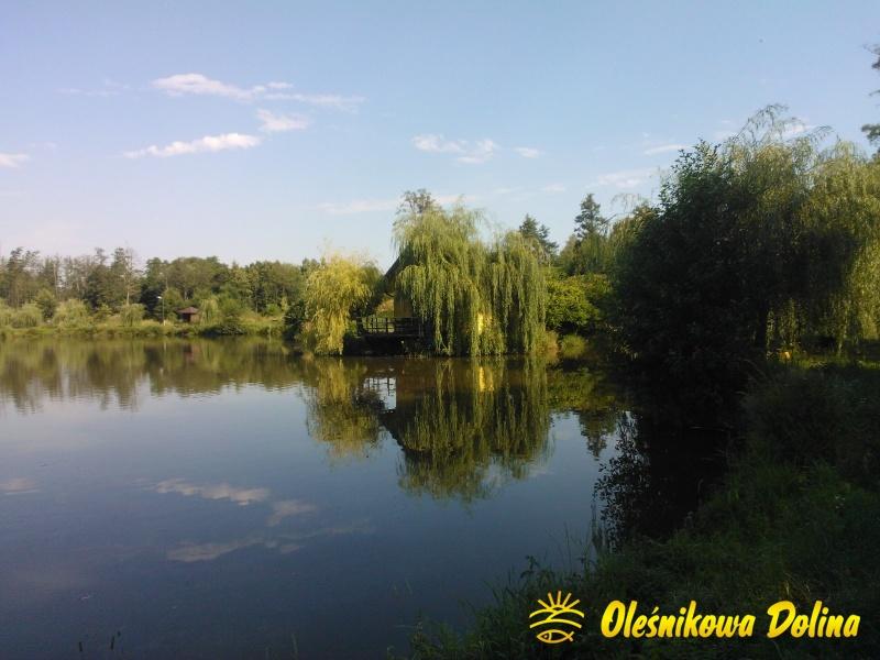 olesnikowa dolina