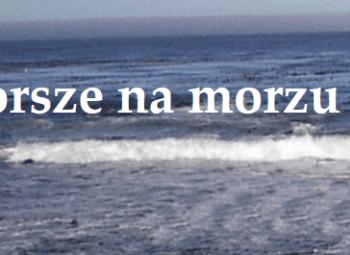 dorsze na morzu