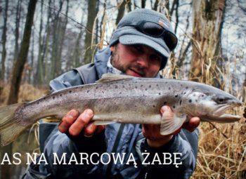 marcowa-zaba