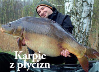 karpie-z-plycizn
