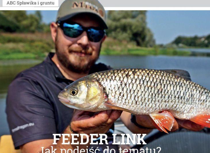 feeder-link